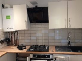 Double room in a newly refurbished ground floor flat
