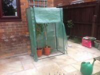 Portable greenhouse suitable for growing tomatoes and other plants
