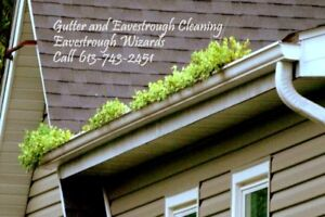 Regular gutter cleaning protects your house. Call today!