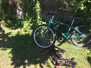 Kids Mountain Bike with Bike Rack
