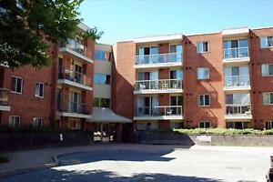 Bunting/Carlton 1 Bedroom for Rent in North St. Catharines!
