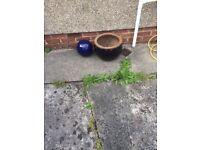 Garden pot and ball