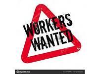 Genral labourer wanted