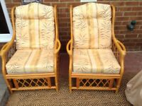 Two comfy cane conservatory chairs.