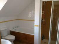 Bath Panel Solid Oak