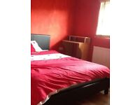 Rent a room, double room available in shared house
