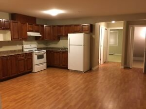 Clean 1Br Ground level Suite
