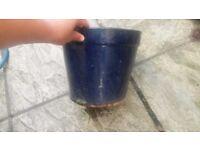 Blue terracotta garden pot £5