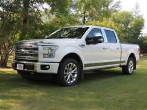 2015 F-150 4X4 Platinum SuperCrew Fully Loaded!