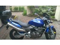 Honda hornet 08/2003
