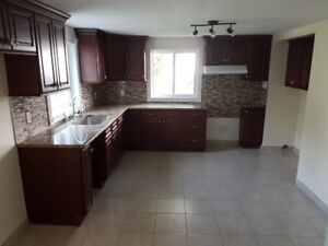A beautiful 4 1/2 for rent in r.d.p Fully renovated