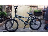 KRAVE BERZERK BMX Bike with 4 pegs