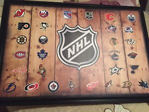 Brand new NHL picture