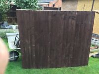 5ft feather edge panels £8 each