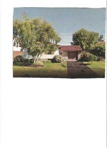 for sale raised bungalow in lindsay ontario MLS X3809269