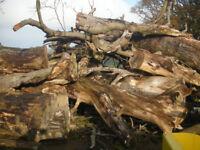 firewood well seasoned