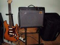 Fender Deluxe 900 Guitar Combo