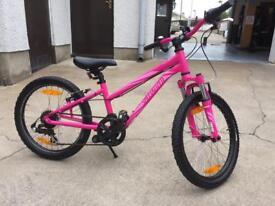 Kids bicycle ,specialized hotrock bike