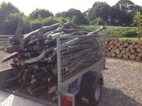 Log tree branches, firewood trailer full