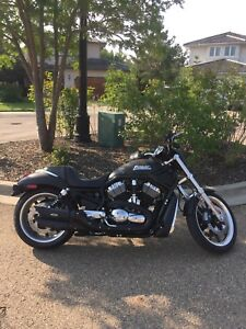 2006 NIGHT ROD FOR SALE