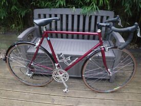 Specialist built AUDAX / TRAINING cycle