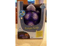 The Purple Twilight Turtle