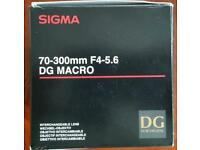 70-300 mm Sigma telephoto macro lense