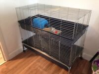 Double cage guinea pigs or rabbits