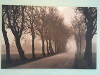 Woodland canvas ikea