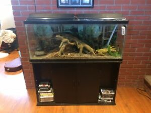 50 Gallon Aquarium Complete