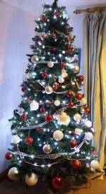 Christmas Tree 7ft 6in Eigar