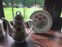 Portmeirion coffee pot and plate