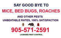 LICENSED, GUARANTEED PEST CONTROL. BED BUG REMOVAL 905.571.2591