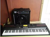 casio keyboard and keyboard combo amp leads etc