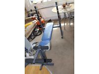 Fitness bench (York 521 bench + lat & curl attachment)