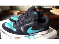 Nike SB Zoom air uk 12