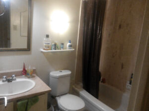 One month sublet available