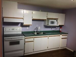 Two bedroom basement suite in Ottewell utilities included