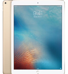 """iPad Pro 12.9"""" 256 memory with WiFi & cellular"""