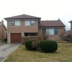 For rent 3+1 bedrooms house in Downsview area