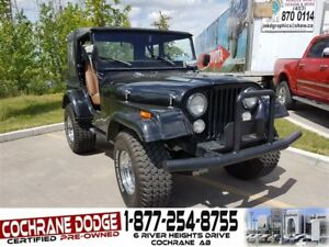 1975 Jeep TJ CJ5 - JUST IN TIME FOR SUMMER!