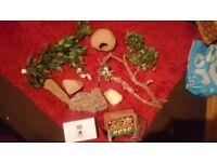reptile gecko bearded dragon vivarium heat mat thermostat and starter kit