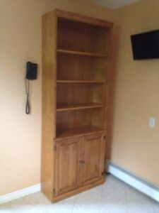 $40 was $50!  Must go!  REDUCED - Bookshelf with Cupboard