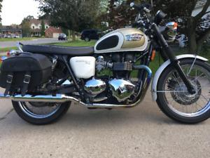 Beautiful Bonnie - Bonneville T100