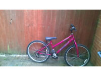 New Girls bike (needs minor adjustments)