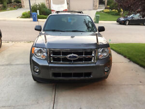 2012 Ford Escape XLT Sport SUV, Crossover