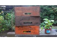 Coca Cola Schweppes and Canada Dry wooden bottle boxes wanted cash paid