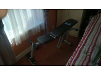 Carl Lewis Fitness Dumbell Bench