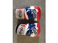 Fairtex 14oz boxing gloves