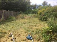 Gardeners Fencing Northfield Selly Oak Longbridge Weoley Castle Driveway Cleaning Skip Filling Hedge
